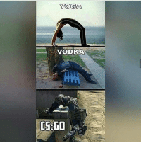Meme, Memes, and Steam: YOGA  VODKA  CS GO Which one are u. I think I'm yoga. Nono csgo defo. -Online- Follow my second page @overwatchdreams -------------------- 💓Reached 10k in 6 months and 1 day of having the account. 19-2-2017💓 💲Trade link in description💲 😥Not playing with fans yet😥 -------------------- 👏🏽If you really want to trade with me please DM me about it as i don't like random trades👏🏽 -------------------- Subscribe to my YouTube. 🎶Nightcore Blessing 🎶 -------------------- 😈Not wanting partners under 5k. Dont ask. Begging for skins means block. Dont do shoutouts😈 -------------------- 💰Top donators💰 @csgo.fox £670😍😱💞 Thederpcharley £434 😱😘 @Cs.c0m £190 😍😊 Rico420nk £48 ☺😘😍 @bot_jakey £36😍😘😏 -------------------- 😊Partners😊 @german.lauch_csgo @csgo.Duck 😥Inactive partners will be taken off. Or if you have to many partners😥 ------------------------ ⛔Ignore the hashtags⛔ csgo counterstrike terrorist counterterrorist knifes knife skins memes memelord girlgamer awp giveaways roadto30000 bomb shooter gamer games steam csgomemes zeus csmemes unboxing 360noscope meme csgodreams teamdreams