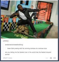 Usain Bolt: yoheezy:  awisemanoncesaidnothing  Usain Bolt posing with his winning tortoise at a tortoise race  are you telling me the fastest man in the world has the fastest slowest  animal  378,211 notes