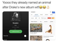 drakes: Yooo0 they already named an animal  after Drake's new album wfe  scorpion  ALL IMAGES NEWS VIDEOS MAPS  Latest GIF HD、Product  black emperor bigscorpio golden  Scorpion  SAVE  ALBUM BY DRAKE  SHUFFLE PLAY  Scorpion- Wikipedia  Download  4 Things That Attract Scorpions  vulcantermite.com  Survival