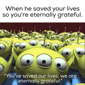 You've saved our lives, we are eternally grateful.: You've saved our lives, we are eternally grateful.