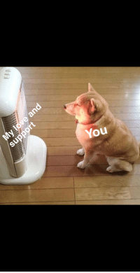"""Friends, Via, and You: You <p>Just keeping my friends toasty via /r/wholesomememes <a href=""""https://ift.tt/2vWwvZd"""">https://ift.tt/2vWwvZd</a></p>"""