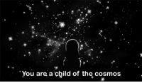Cosmos, You, and Child: You are a child of the cosmos