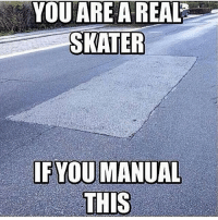 Facts, Skate, and You: YOU ARE A REAL  SKATER  IF YOU MANUAL  THIS Facts 💯💯💯 skatermemes