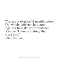 "manifestation: ""You are a wonderful manifestation.  The whole universe has come  together to make your existence  possible. There is nothing that  is not you.  Thích Nhát Hanh  extramadness.tumblr.com"