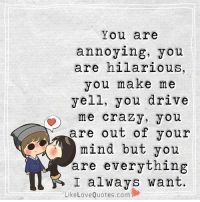 Crazy, Love, and Memes: You are  annoying, you  are hilarious,  you make me  yell, you drive  me crazy, you  are out of your  mind but you  are everything  I always want.  Like Love Quotes.com You are everything I always want.