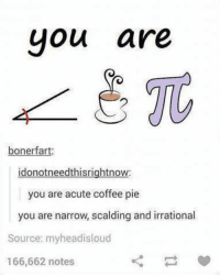 Irrator: you are  boner fart:  donot needthisrightnow  you are acute coffee pie  you are narrow, scalding and irrational  Source: myheadisloud  166,662 notes