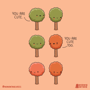 [OC] How autumn begins via /r/wholesomememes https://ift.tt/2mZ3LeN: YOU ARE  CUTE.  YOU ARE  CUTE  ТОО.  wawa  WIWA  @wawawiwacomics [OC] How autumn begins via /r/wholesomememes https://ift.tt/2mZ3LeN