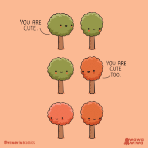 [OC] How autumn begins: YOU ARE  CUTE.  YOU ARE  CUTE  TOO.  wawa  WIWA  wawawiwacomics [OC] How autumn begins