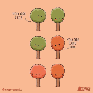 This made me smile....its so cute.: YOU ARE  CUTE  YOU ARE  CUTE  TOO  wawa  WIWA  wawawiwacomics This made me smile....its so cute.
