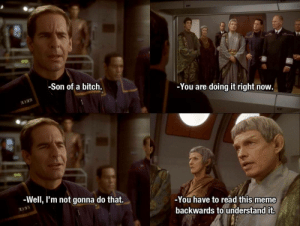 Bitch, Meme, and You: -You are doing it right now.  -Son of a bitch.  -You have to read this meme  -Well, I'm not gonna do that.  backwards to understand it. I'm not gonna do that.