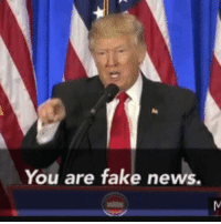 You Are Fake News: You are fake news.