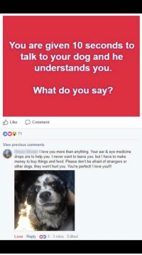 """<p>Wholesome communication via /r/wholesomememes <a href=""""https://ift.tt/2JsT25y"""">https://ift.tt/2JsT25y</a></p>: You are given 10 seconds to  talk to your dog and he  understands you.  What do you say?  tb Like Comment  0071  View previous comments  I love you more than anything. Your ear & eye medicine  drops are to help you. I never want to leave you, but I have to make  money to buy things and food. Please don't be afraid of strangers or  other dogs, they won't hurt you. You're perfect! I love you!l!  Love Reply O 3-3 mins Edited <p>Wholesome communication via /r/wholesomememes <a href=""""https://ift.tt/2JsT25y"""">https://ift.tt/2JsT25y</a></p>"""