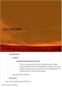 Funny, Shit, and Tumblr: you are here  heauff  wickedlovelypertectlyimperfect  This is a picture from the Curiosity Rover on Mars  showing Earth from the Perspective of Mars. You are  literally looking at your home from the Perspective of  another planet. Epic times indeed  group photo everyone  everyone  hey i look really good in this one  shit I think I blinked