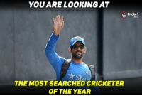 Memes, Cricket, and Google Search: YOU ARE LOOKING AT  S Shots  THE MOST SEARCHED CRICKETER  OF THE YEAR Captain cool leads in Google search followed by kohli at no. 2 !