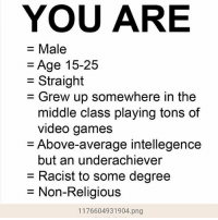 Anime, Black Lives Matter, and Funny: YOU ARE  = Male  = Age 15-25  Straight  - G  rew up somewhere in the  middle class playing tons of  video games  = Above-average intellegence  but an underachiever  = Racist to some degree  = Non-Religious  1176604931904.png Holy shit ★ Follow my personal and shitpost @peckphillip @spingus_fleeb _______________________________ - - - - meme furry dankmeme overwatch memes cringe vaporwave anime gay dankmemes lol trump weaboo filthyfrank bepis benis boi blacklivesmatter lol edgy wtf filthyfrank lmao haha funny 2017
