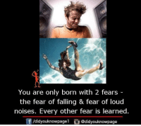 loud noises: You are only born with 2 fears  the fear of falling & fear of loud  noises. Every other fear is learned.  /didyouknowpagel  @didyouknowpage