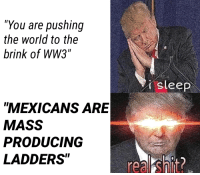 """Shit, Trump, and World: """"You are pushing  the world to the  brink of WW3""""  isleep  MEXICANS ARE  MASS  PRODUCING  LADDERS  real shit <p>Triggered Trump</p>"""