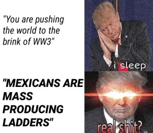"""Shit, World, and Brink: """"You are pushing  the world to the  brink of WW3""""  isleep  MEXICANS ARE  MASS  PRODUCING  LADDERS  real shit"""