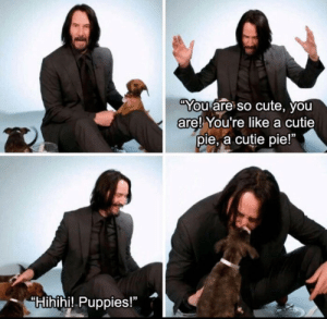 "Cute, Puppies, and Pie: You are so cute, you  are! You're like a cutie  pie, a cutie pie!""  Hihihi! Puppies!"" We don't deserve Keanu"