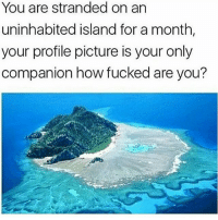 Goddammit... Imma be third wheeling. . . . Supernatural deanwinchester samwinchester jaredpadalecki jensenackles destiel castiel mishacollins hellismybitch: You are stranded on an  uninhabited island for a month,  your profile picture is your only  companion how fucked are you? Goddammit... Imma be third wheeling. . . . Supernatural deanwinchester samwinchester jaredpadalecki jensenackles destiel castiel mishacollins hellismybitch