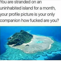 Lit, Tumblr, and How: You are stranded on an  uninhabited island for a month,  your profile picture is your only  companion how fucked are you? 2 doges. LIT !! tag the person if it's a person w ig