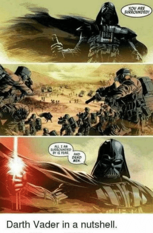Darth Vader, Movies, and Fear: YOU ARE  SURROUNDED  ALL I AM  SURROUNDED  BY IS FEAR AND  DEAD  MEN  Darth Vader in a nutshell If only he performed like that in movies