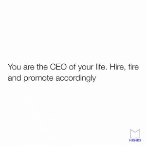 Dank, Fire, and Life: You are the CEO of your life. Hire, fire  and promote accordingly  MEMES I need to be replaced then.