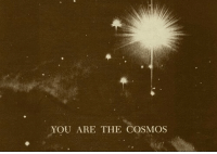 Cosmos, You, and You Are: YOU ARE THE COSMOS