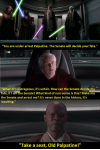 """Palpatine: """"You are under arrest Palpatine. The Senate will decide your fate.""""  """"What! It's outrageous, it's unfair. How can the Senate decide m  fate, if 1 am the Senate? What kind of non-sense is this? Make me  the Senate and arrest me? It's never done in the history, It's  insulting.""""  """"Take a seat, Old Palpatine!"""""""