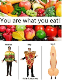 bigley: You are what you eat!  Mods  America  Italy  r/dank memes