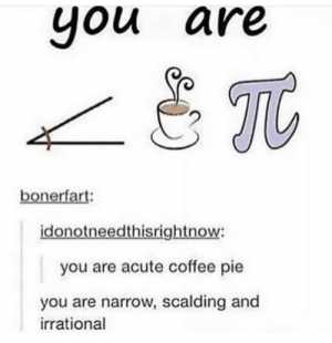 pie: you are  you  Tt  bonerfart:  idonotneedthisrightnow:  you are acute coffee pie  you are narrow, scalding and  irrational