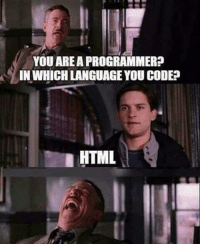 YOU AREA PROGRAMMER? IN WHICH LANGUAGE YOU CODE? HTML | Programmer