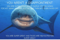 """<p>You Are Great via /r/wholesomememes <a href=""""http://ift.tt/2iwN99d"""">http://ift.tt/2iwN99d</a></p>: YOU AREN'T A DISAPPOINTMENT  YOU ARE SUPER GREAT AND IF PEOPLE GET YOU DOWN  FOR NOT BEING PERFECT ALL THE TIME THEN BITE THEIR FACES OFF  YOU ARE SUPER GREAT AND FACES ARE HIGH IN PROTEIN  SUPER GREAT <p>You Are Great via /r/wholesomememes <a href=""""http://ift.tt/2iwN99d"""">http://ift.tt/2iwN99d</a></p>"""