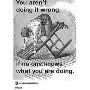 meirl: You  aren't  doing it wrong  if no one knows  what you are doing.  notyouravcragesteve  I mean meirl
