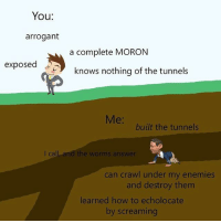 tunnels: You:  arrogant  a complete MORON  exposed .  knows nothing of the tunnels  Me:  built the tunnels  I call, and the worms answer  can crawi under my enemies  and destroy them  learned how to echolocate  by screaming