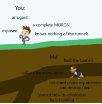Arrogant, How To, and Enemies: You:  arrogant  a complete MORON  exposed  knows nothing of the tunnels  Me:  built the tunnels  I call and the worms answer  can crawl under my enemies  and destroy them  learned how to echolocate  by screaming