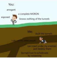 Arrogant, How To, and Enemies: You:  arrogant  a complete MORON  exposed  knows nothing of the tunnels  Me:  built the tunnels  l call and the worms answer  can crawl under my enemies  and destroy them  learned how to echolocate  by screaming