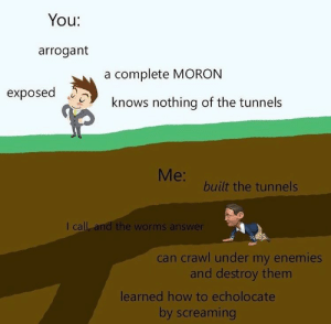 Arrogant, How To, and Enemies: You:  arrogant  a complete MORON  knows nothing of the tunnels  Me:  built the tunnels  I call, and the worms answer  can crawl under my enemies  and destroy them  learned how to echolocate  by screaming