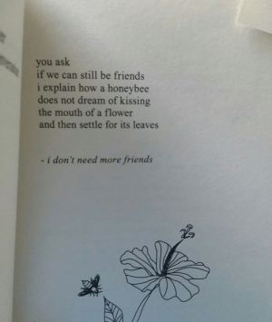 honeybee: you ask  if we can still be friends  i explain how a honeybee  does not dream of kissing  the mouth of a flower  and then settle for its leaves  i don't need more friends