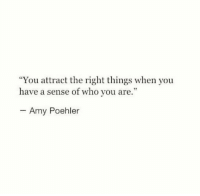 "Amy Poehler, Who, and Amy: ""You attract the right things when you  have a sense of who you are.""  Amy Poehler"