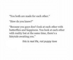 "Life, Love, and Puppy: ""You both are made for each other.""  ""How do you know?""  ""Because you guys don't look at each other with  butterflies and happiness. You look at each other  with reality but at the same time, there's a  fairytale awaiting you.  this is real life, not puppy love"