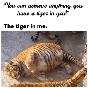 "Tiger, Dreams, and Can: ""You can achieue anything. yeu  (C  haue a tiger irn  The tiger in me Get up and follow your dreams! 🐯"