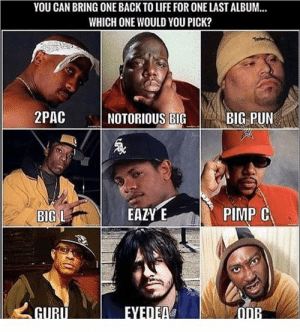 Eazy E, Life, and Memes: YOU CAN BRING ONE BACK TO LIFE FOR ONE LAST ALBUM...  WHICH ONE WOULD YOU PICK?  2PAC  BIG PUN  NOTORIOUS BIG  EAZY E  PIMP C  BIG L