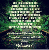 """Animals, God, and Memes: YOU CAN CONVINCE THE  ENTIRE WORLD YOU'REA  CHRISTIAN. YOU CAN EVEN  CONVINCE YOURSELE BUT ONLY  GOD KNOWS THE CONDITION  OF A MAN'S HEART. DON'T FOOL  YOURSELF BY THINKING VOU  CAN FOOL,000%  REPENT 2 BELIEVE THECOSPEL  whae  man sos that  also heap  wil  Galaians 67 """"But there were also false prophets among the people, just as there will be false teachers among you. They will secretly introduce destructive heresies, even denying the sovereign Lord who bought them—bringing swift destruction on themselves. Many will follow their depraved conduct and will bring the way of truth into disrepute. In their greed these teachers will exploit you with fabricated stories. Their condemnation has long been hanging over them, and their destruction has not been sleeping. For if God did not spare angels when they sinned, but sent them to hell, putting them in chains of darkness to be held for judgment; if he did not spare the ancient world when he brought the flood on its ungodly people, but protected Noah, a preacher of righteousness, and seven others; 6 if he condemned the cities of Sodom and Gomorrah by burning them to ashes, and made them an example of what is going to happen to the ungodly; and if he rescued Lot, a righteous man, who was distressed by the depraved conduct of the lawless (for that righteous man, living among them day after day, was tormented in his righteous soul by the lawless deeds he saw and heard)— if this is so, then the Lord knows how to rescue the godly from trials and to hold the unrighteous for punishment on the day of judgment. This is especially true of those who follow the corrupt desire of the flesh and despise authority. Bold and arrogant, they are not afraid to heap abuse on celestial beings; yet even angels, although they are stronger and more powerful, do not heap abuse on such beings when bringing judgment on them from the Lord. But these people blaspheme in matters they do not understand. They are like unreasoning a"""