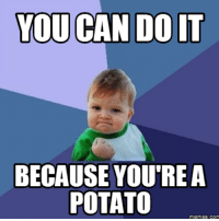 you can do it: YOU CAN DO IT  BECAUSE YOU'RE A  POTATO  memes.co