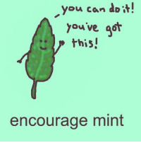 you got this: you can do'i  you ve got  this  encourage mint