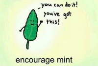 """<p>Encouragement Personified via /r/wholesomememes <a href=""""http://ift.tt/2ovxVpm"""">http://ift.tt/2ovxVpm</a></p>: you can doi  you ve qot  .. > this!  encourage mint <p>Encouragement Personified via /r/wholesomememes <a href=""""http://ift.tt/2ovxVpm"""">http://ift.tt/2ovxVpm</a></p>"""