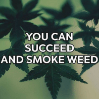 Shout out to all my go getters! WakeAndBake TheDailyCheif: YOU CAN  SUCCEED  AND SMOKE WEED Shout out to all my go getters! WakeAndBake TheDailyCheif