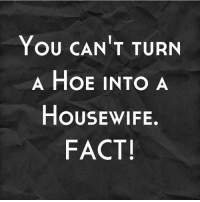 25+ Best Can T Turn a Hoe Into a Housewife Memes | Fact Memes