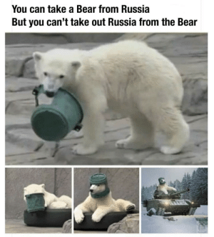 Bear, Russia, and Mother: You can take a Bear from Russia  But you can't take out Russia from the Bear Always Mother Russia 🇷🇺